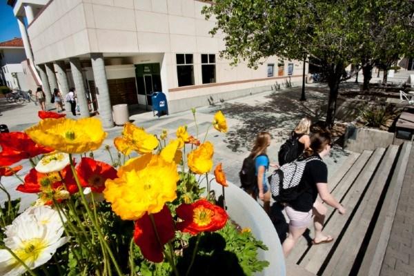 Flowers at Hunsaker Center