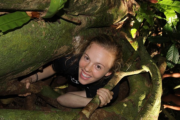 McKenzie Caborn '16 climbs up the inner core of a giant strangler fig tree. (Photo by Ron Leidich)