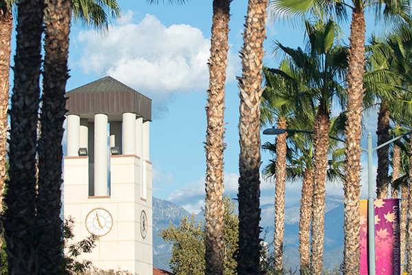 Hunsaker Plaza Clocktower behind Palm Trees