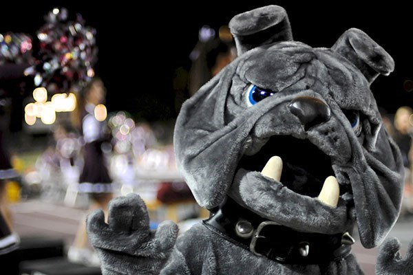 Costume Bulldog Mascot at a football game